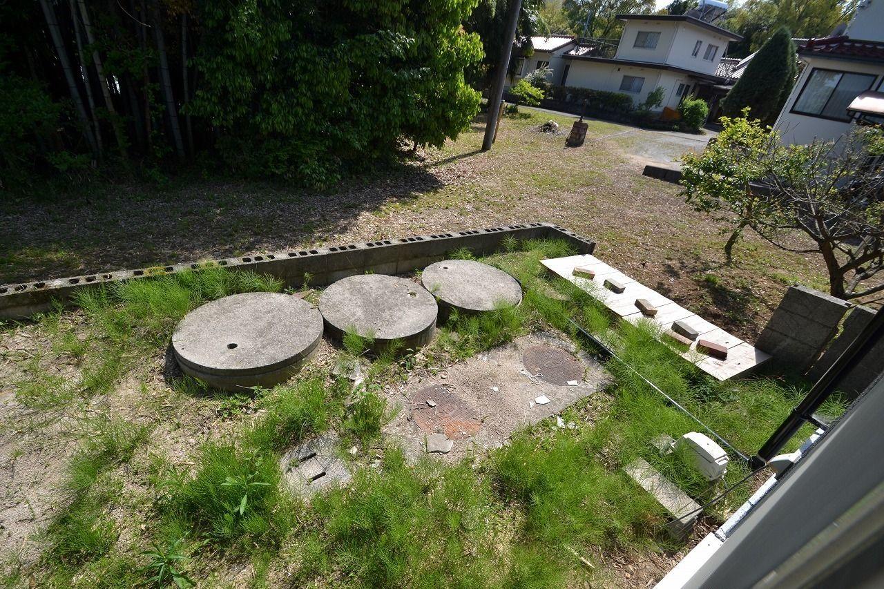 南側の庭です。