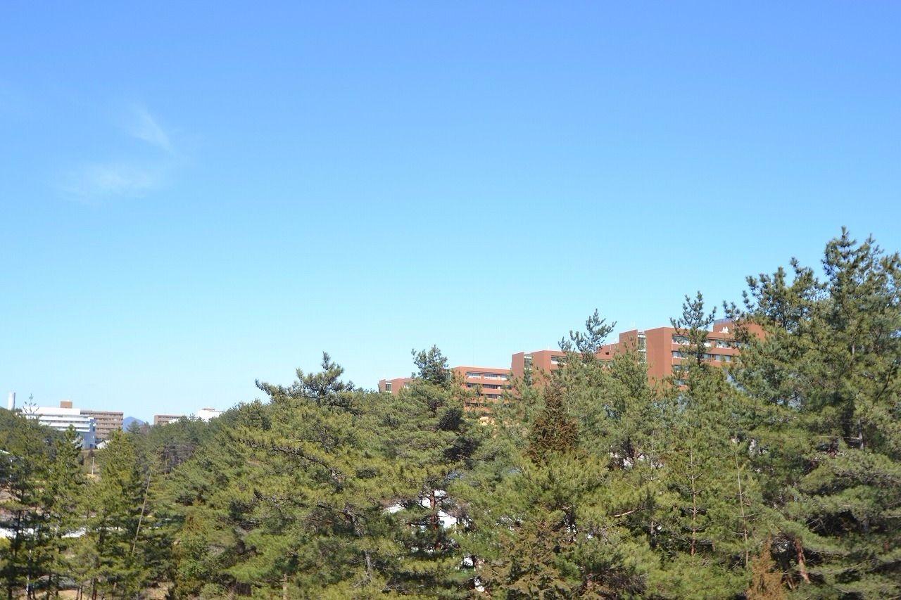 広島大学の南側の風景