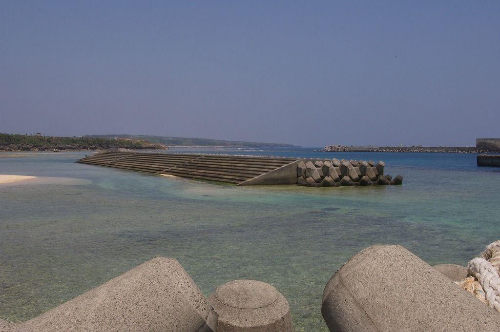 広島大学大学院の研究について~水圏資源生物学研究室~